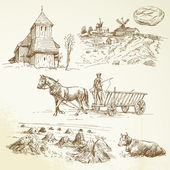 Rural landscape, farming, haying — Stockvector