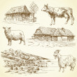 Vector de stock : Rural landscape, village, farm animals