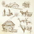 Hand drawn set - rural landscape, village, farm animals — Stock Vector
