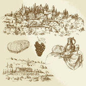 Italian rural landscape - vineyard — Stock Vector