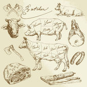 Pork and beef cuts - hand drawn collection — 图库矢量图片