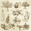Harvest and olive product - hand drawn collection — Stock Vector #40142849