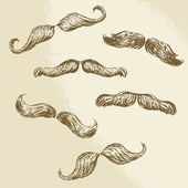 Moustaches collection - hand drawn vector illustration  — Stock Vector