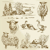 Rural landscape, farm animal - hand drawn illustration  — 图库矢量图片