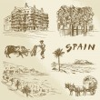 Spain - hand drawn collection — Stock Vector #48617059