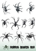 Spider vector set — Stock Vector