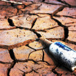 Stock Photo: Bottle on parched earth