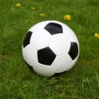 Stock Photo: Soccer ball on green grass.
