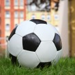 Soccer ball on the green grass in the yard - Stock Photo