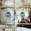 Old iron door - Stock Photo