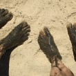 Muddy toes and feet - Stock Photo
