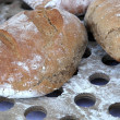 Freshly baked bread variety on metal surface - Stock Photo