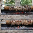 Kebabs on skewers - Foto de Stock