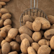 Raw potatoes on wooden table with shovel - Stock Photo