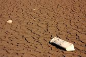 Road sign lying on the parched earth — Stock Photo