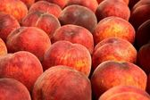 Fresh ripe peaches in the box ready for sale — Stock Photo