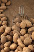 çiğ patates kürek ile ahşap tablo — Stok fotoğraf