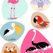 Bird, Animal set — Stock Vector