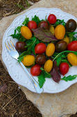 Grape Tomatoes Salad — Stock Photo