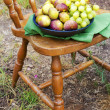 Fig and grape in the bowl on the vintage wooden chair in the garden — Stock Photo