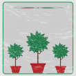 Trees with green leaves in the red flower pots on a gray backgro — Stock Vector