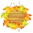 Wooden noticeboard decorated with autumn maple leaves isolated o — Stock Vector
