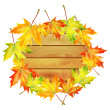 Wooden noticeboard decorated with autumn maple leaves isolated o — Image vectorielle