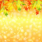 Autumn maple leaves on a yellow sparkling background.autumn back — Stock Vector