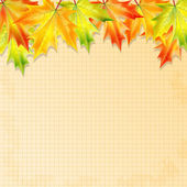 Background with autumn leaves and sheet of paper into a cell.aut — Stock vektor