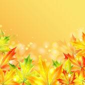 Foglie di acero autunno su un giallo frizzante background.autumn indietro — Vettoriale Stock