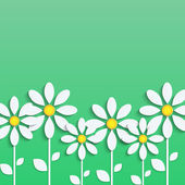 Floral background. white daisies on a green background.vector — Stock Vector