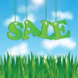 Word sale on a background of blue sky and green grass.seasonal s — Vector de stock