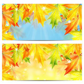 Set of autumn backgrounds with yellow and orange maple leaves — Stock Vector