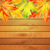 Autumn maple leaves on a background of wooden planks  — Stock Vector