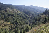 Valley — 图库照片