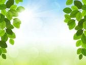 Wektor wiosna — Wektor stockowy