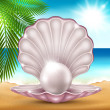 Pearl on the sand — Stock Vector