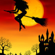 Witch flying on a broomstick — Stock Vector