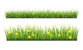 Summer grass — Vecteur