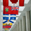 Stock Photo: Canadian Flags