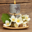Candle and white flowers — Stock Photo #13963850