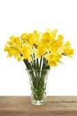 Bunch of daffodils — Stock Photo