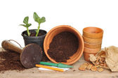 Garden pots and tools — Stock Photo