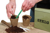 Hands planting seeds — Stock Photo