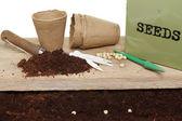 Erwt zaden en potten — Stockfoto