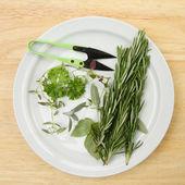 Cut herbs on a plate — Foto de Stock