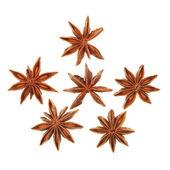 Star anise — Stock Photo