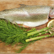 Trout and herbs — Stockfoto #16268083