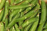 エンドウ豆の鞘 — ストック写真