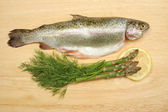 Trout and ingredients — Stock Photo